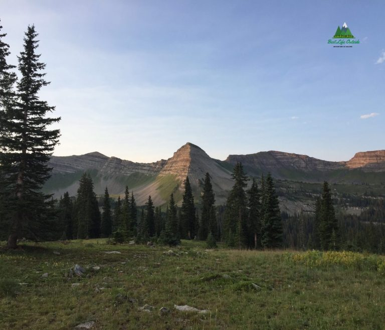 Oh-Be-Joyful Trail Crested Butte