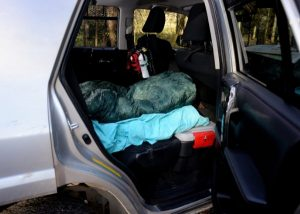Camping in the car