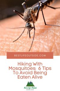 Hiking With Mosquitoes 6 Tips To Avoid Being Eaten Alive