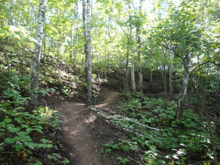 Lester River Trail And Amity East Trail Duluth, MN