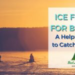 Tips for catching bluegill