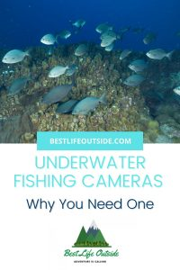 Is an Underwater Fishing Camera Worth It?