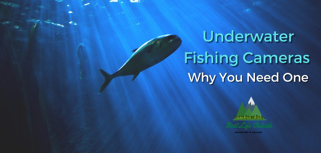 Why You Need and Underwater Fishing Camera