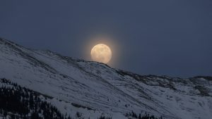Try to plan your snowshoeing adventure on the night of a full moon for more visibility